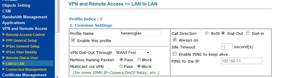 LAN-LAN common settings